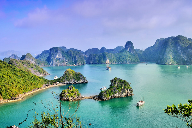 Vietnam Tour